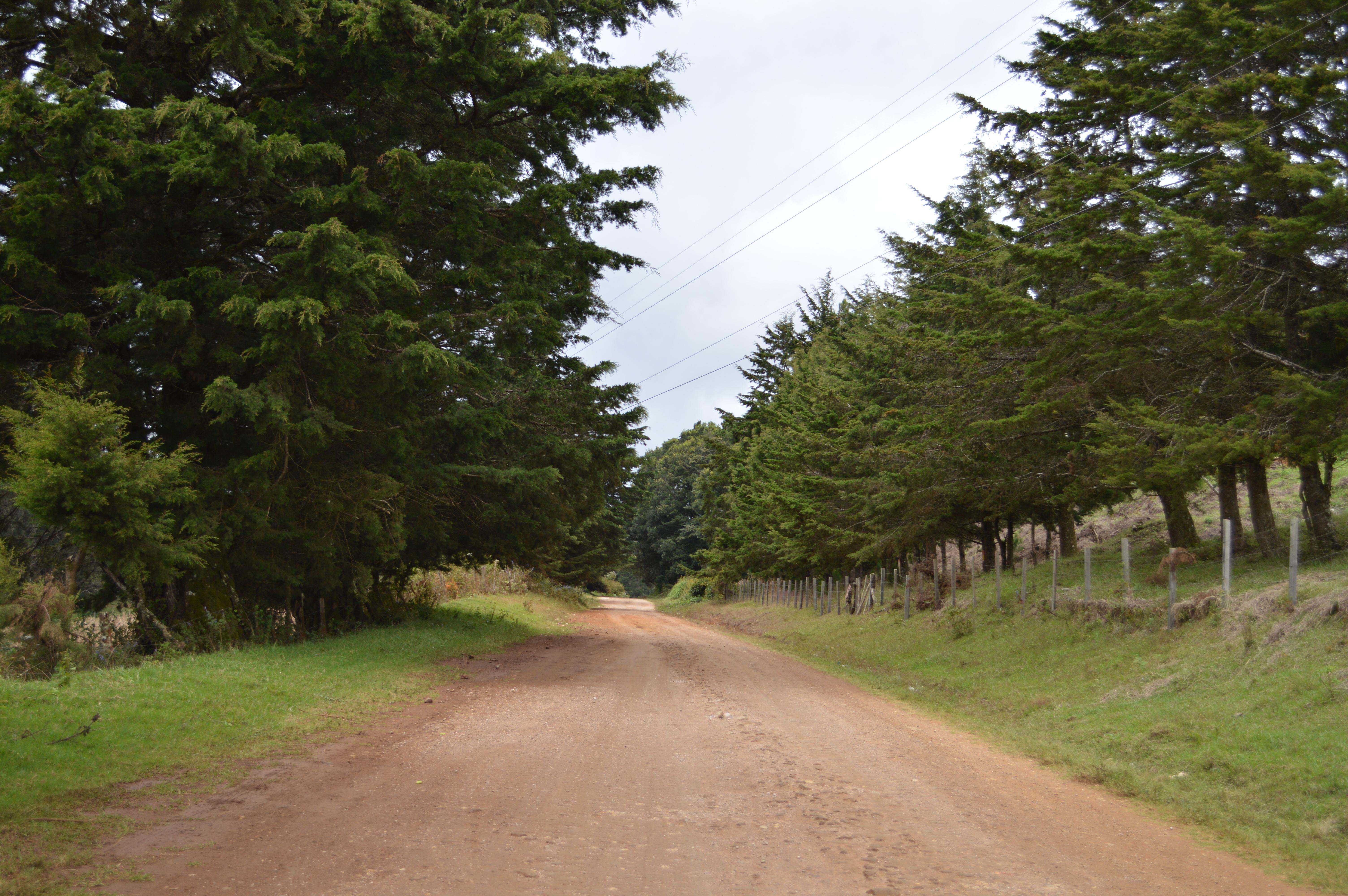 Paisaje Santa Elena